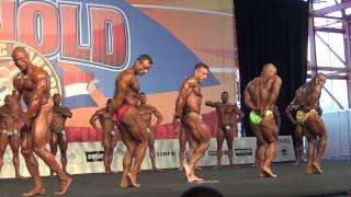 Arnold Classic Madrid 2014 Mens Bodybuilding up to 80 kg